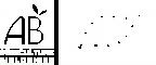 logo_AB_Europe_blanc